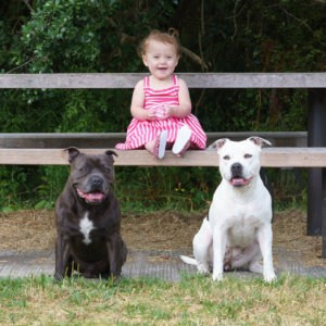 Pet Photographer Auckland